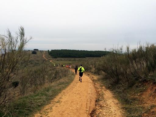 Trail del Serrucho 2015